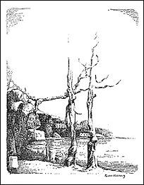 Dahlberg 6